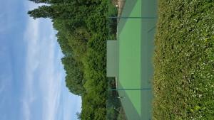 Peintures de courts de tennis